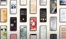 Bạn muốn Apple sao chép tính năng nào của Android 12 trên iOS 15?
