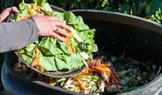 Vật liệu xây dựng làm từ rác thải thực phẩm, bền hơn bê tông có thể ăn được và vẫn giữ được hương vị