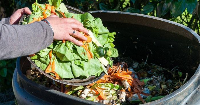 Mỗi năm có 1,3 tấn thực phẩm bị lãng phí trên thế giới do bị lãng phí