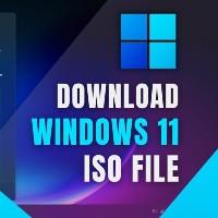 Cách tải Windows 11, download ISO Win 11 chính thức từ Microsoft