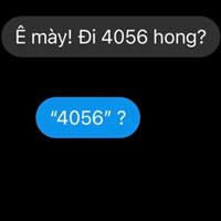 4056 là gì?