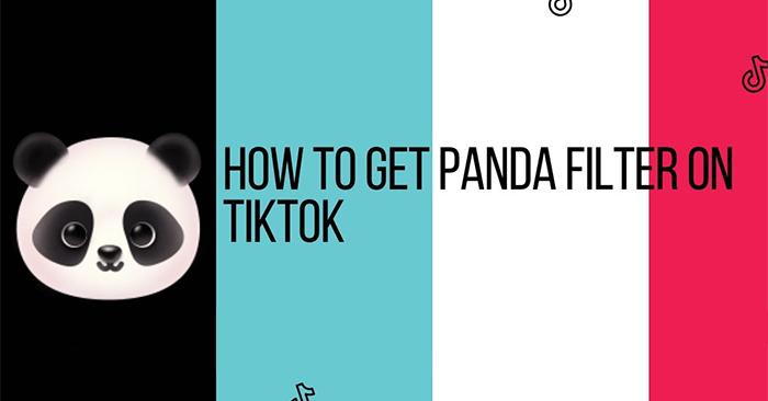 Cách quay video hiệu ứng gấu trúc trên TikTok