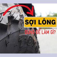 Phần 'lông' mọc trên lốp xe có tác dụng gì?