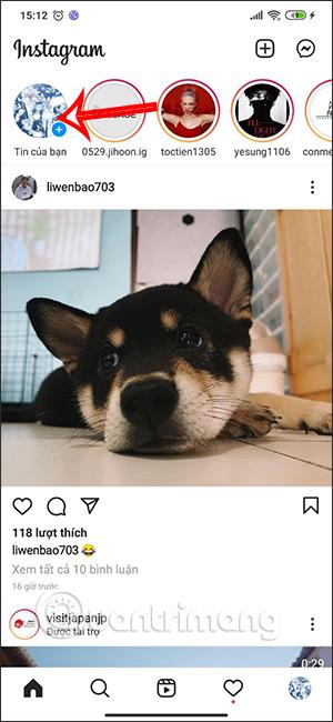 Cách tải filter con bướm xanh trên Instagram