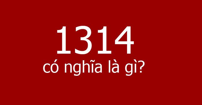 1314 là gì?