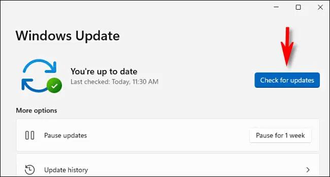 """Nhấp vào nút """"Check for Updates"""""""