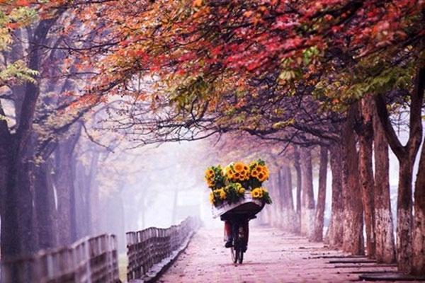 Thơ về tháng 9 mùa thu