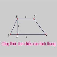 Công thức tính chiều cao hình thang: thường, vuông, cân