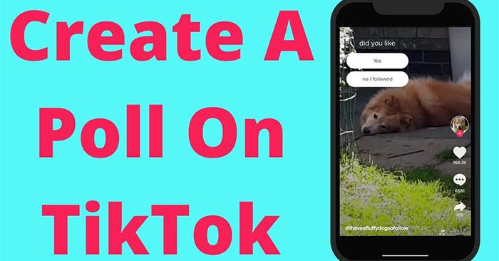 Cách tạo bình chọn trên TikTok