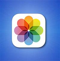 Cách sử dụng tính năng xác định đối tượng Visual Lookup trên iPhone