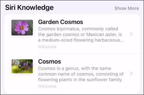 Siri Knowledge