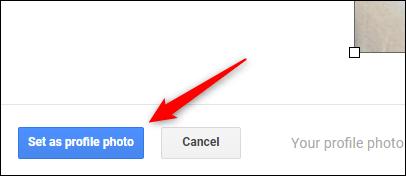 """Nhấp vào nút """"Set as Profile Photo"""""""
