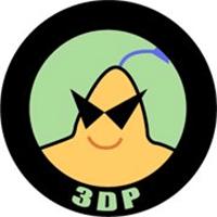3DP Chip
