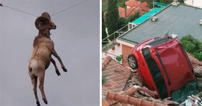 14 tình huống tai nạn khó hiểu tới mức bị nghi ngờ đã qua Photoshop