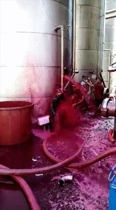 Cảnh tượng xảy ra khi một bể chứa rượu vang đỏ tại nhà máy rượu vang Sicilian bị vỡ.