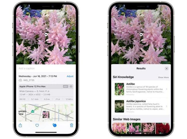 Visual Lookup trong iOS 15