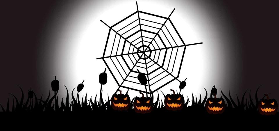 Ảnh Halloween hình lưới nhện.